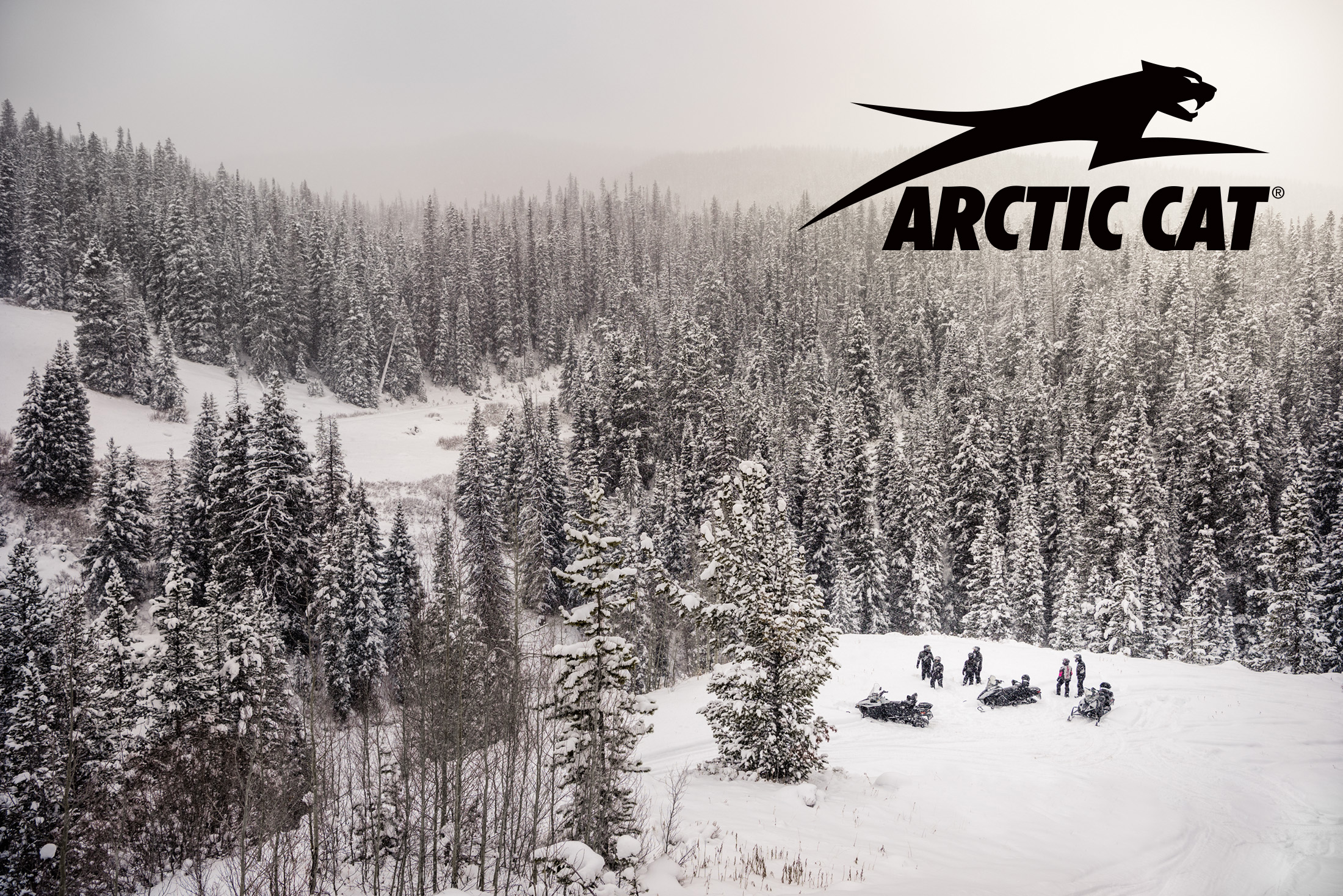 201612_Arctic_Cat_0753_5152_logo