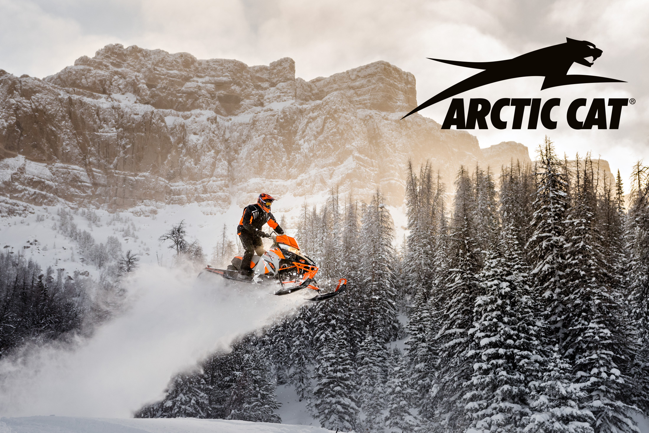 201612_Arctic_Cat_11579_4540_logo