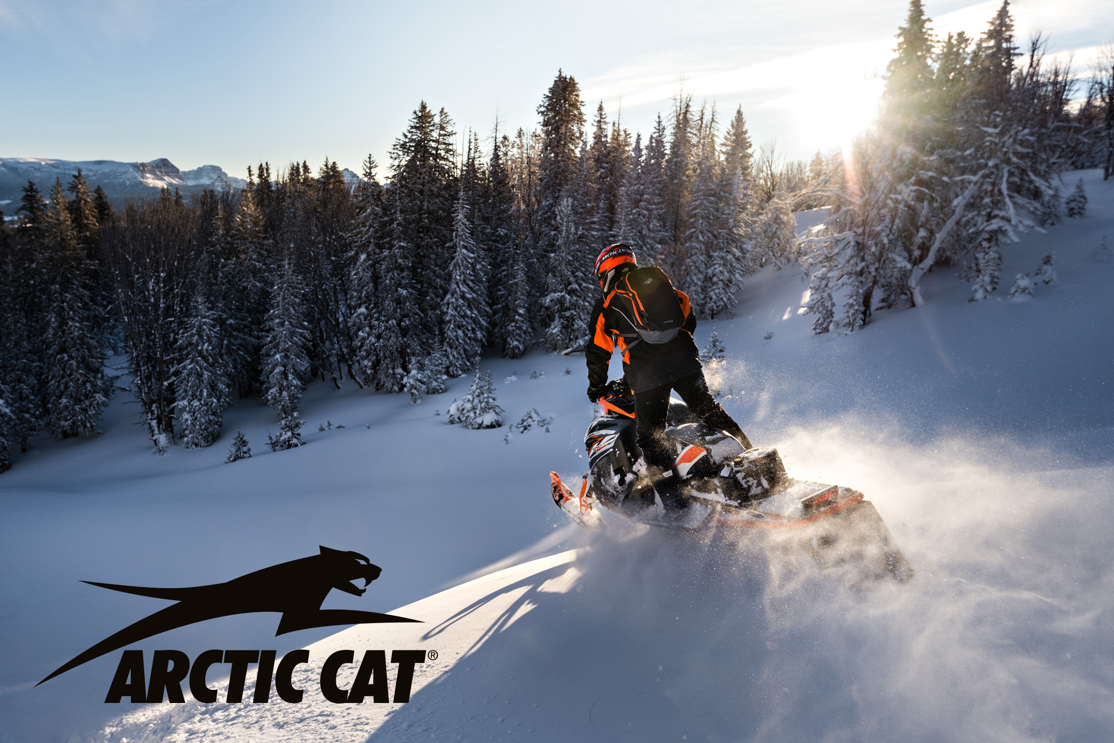201612_Arctic_Cat_7913_2734_logo